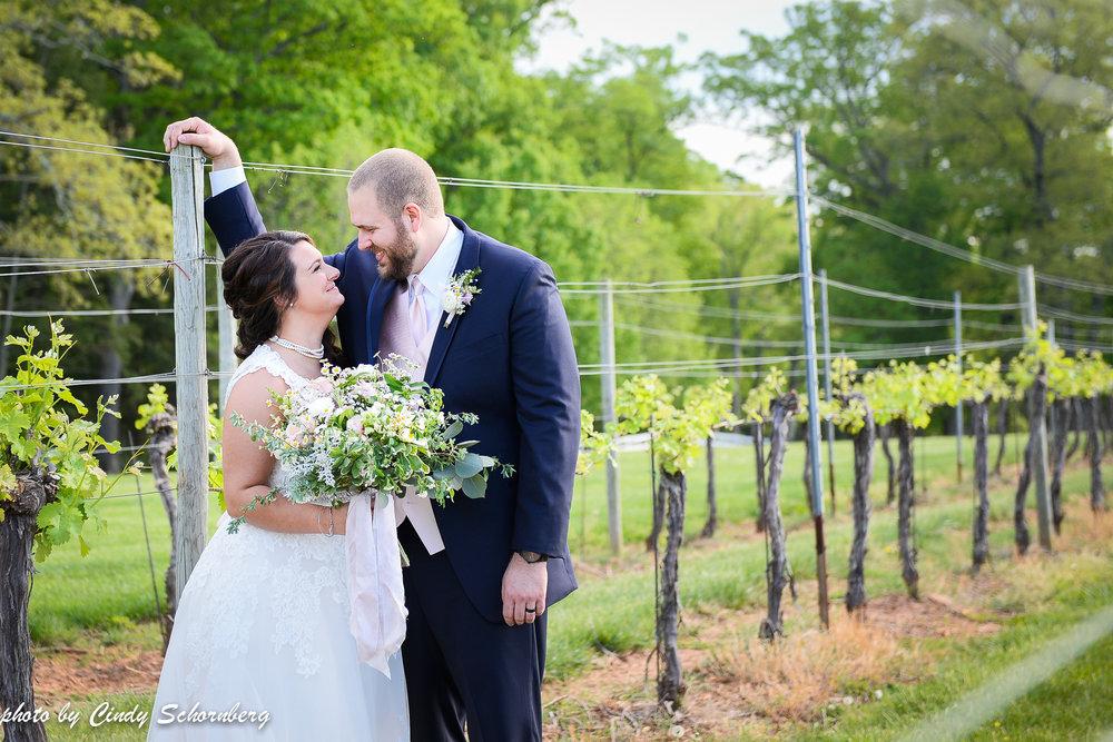 virginia vineyard wedding 6