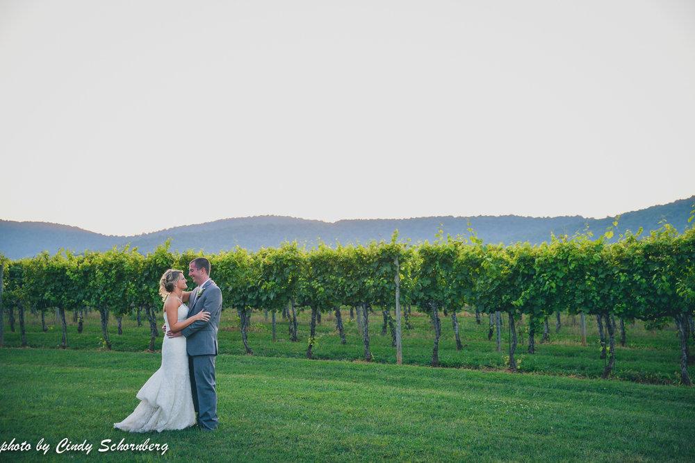 vineyard_weddings_Charlottesville_Virginia_020.jpg