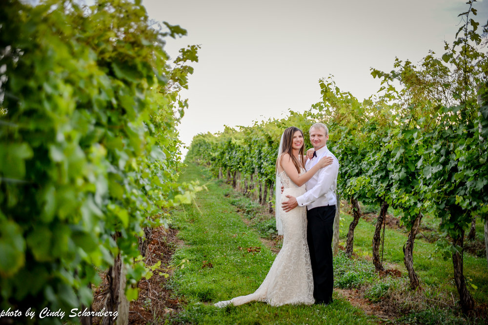 vineyard_weddings_Charlottesville_Virginia_0026.jpg