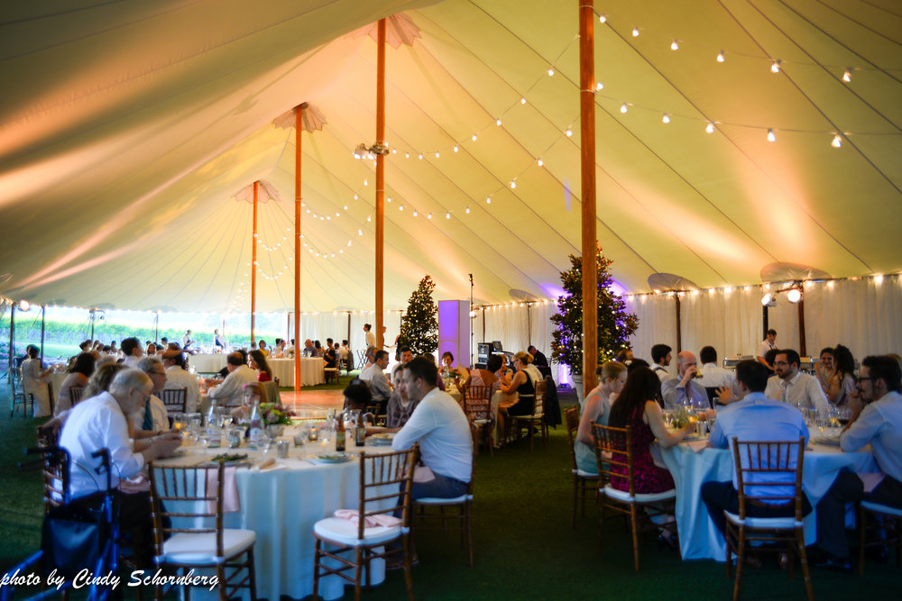 vineyard_weddings_Charlottesville_Virginia_0022.jpg
