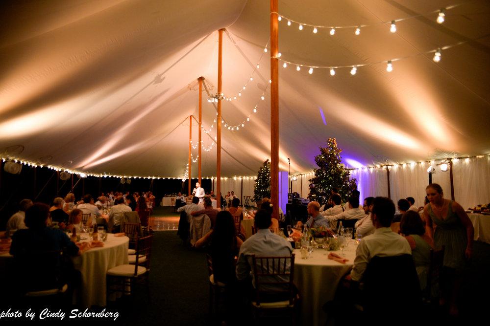 vineyard_weddings_Charlottesville_Virginia_0028.jpg