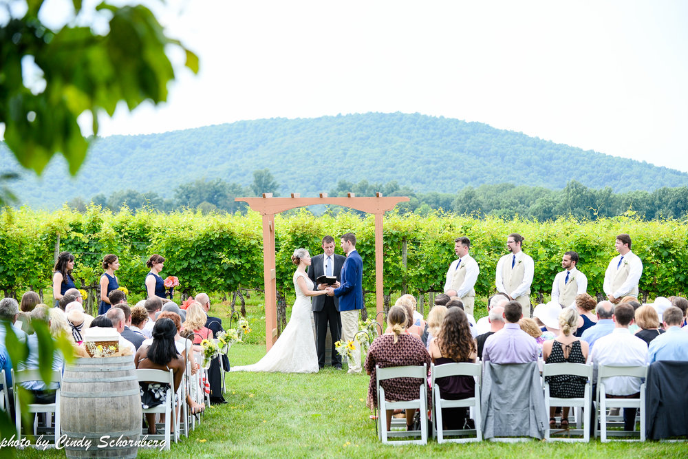 vineyard_wedding_Charlottesville_0003.jpg