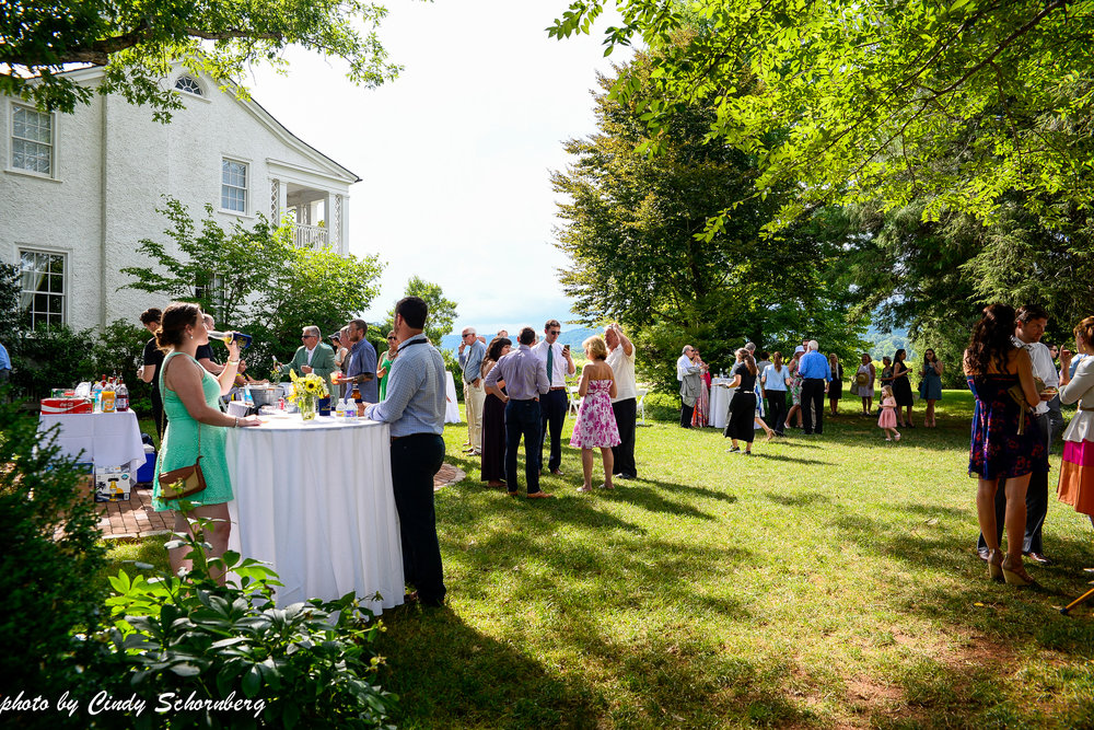 vineyard_wedding_Charlottesville_0006.jpg