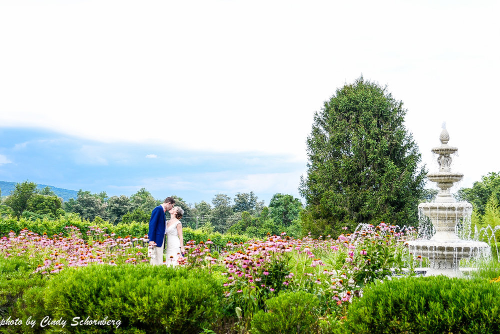 vineyard_wedding_Charlottesville_0008.jpg