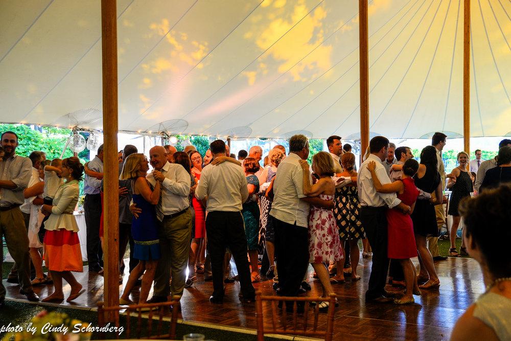 vineyard_wedding_Charlottesville_0011.jpg