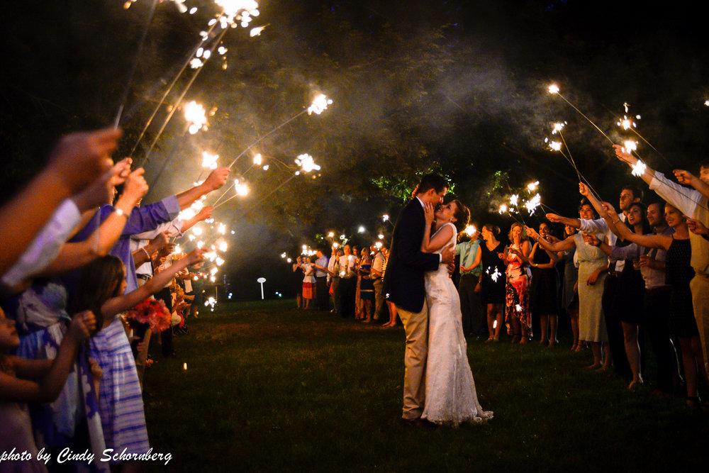 vineyard_wedding_Charlottesville_0014.jpg