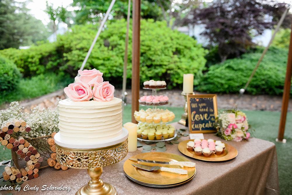 virginia_vineyard_wedding_013.jpg