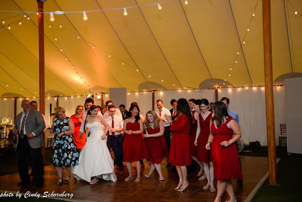 virginia_vineyard_wedding_014.jpg