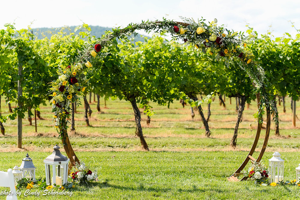 virginia_vineyard_wedding_01.jpg