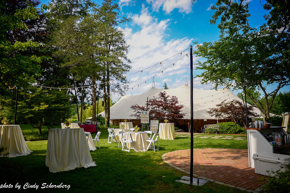virginia_vineyard_wedding_03.jpg