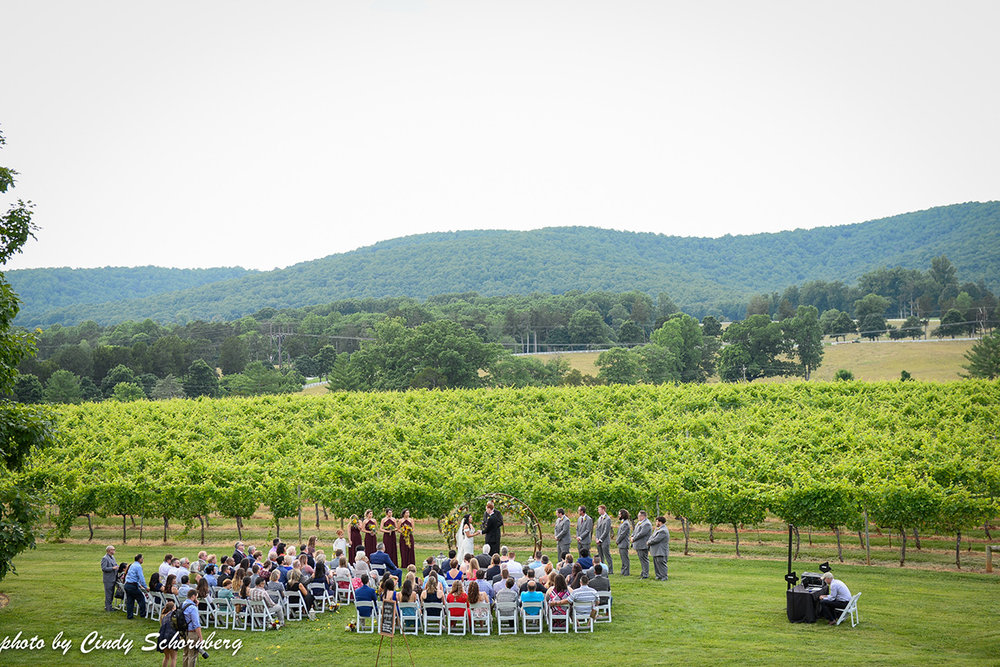 virginia_vineyard_wedding_09.jpg