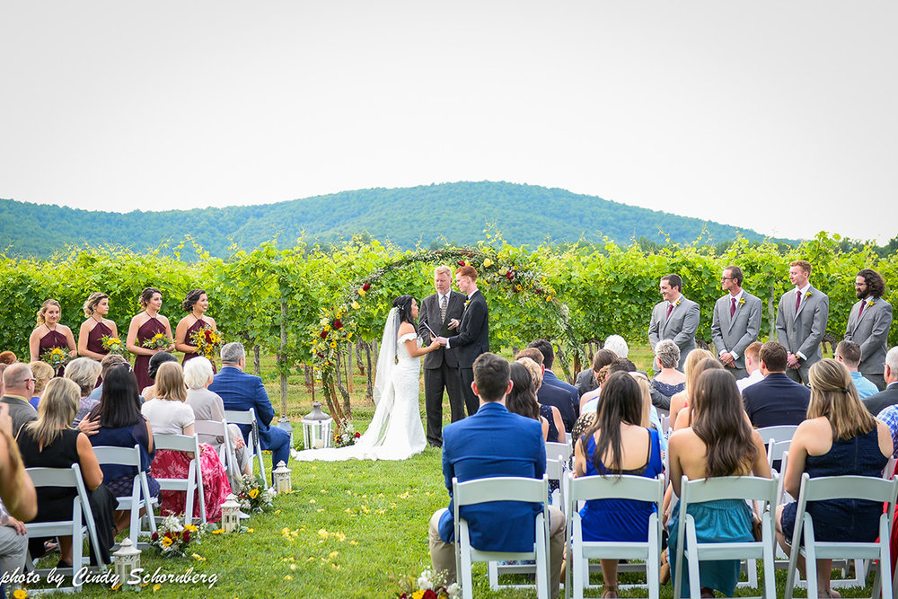 virginia_vineyard_wedding_10.jpg