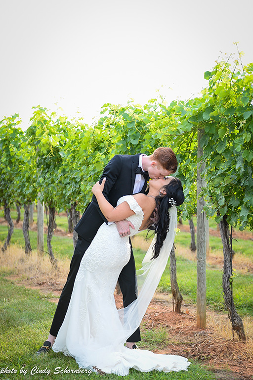 virginia_vineyard_wedding_12.jpg