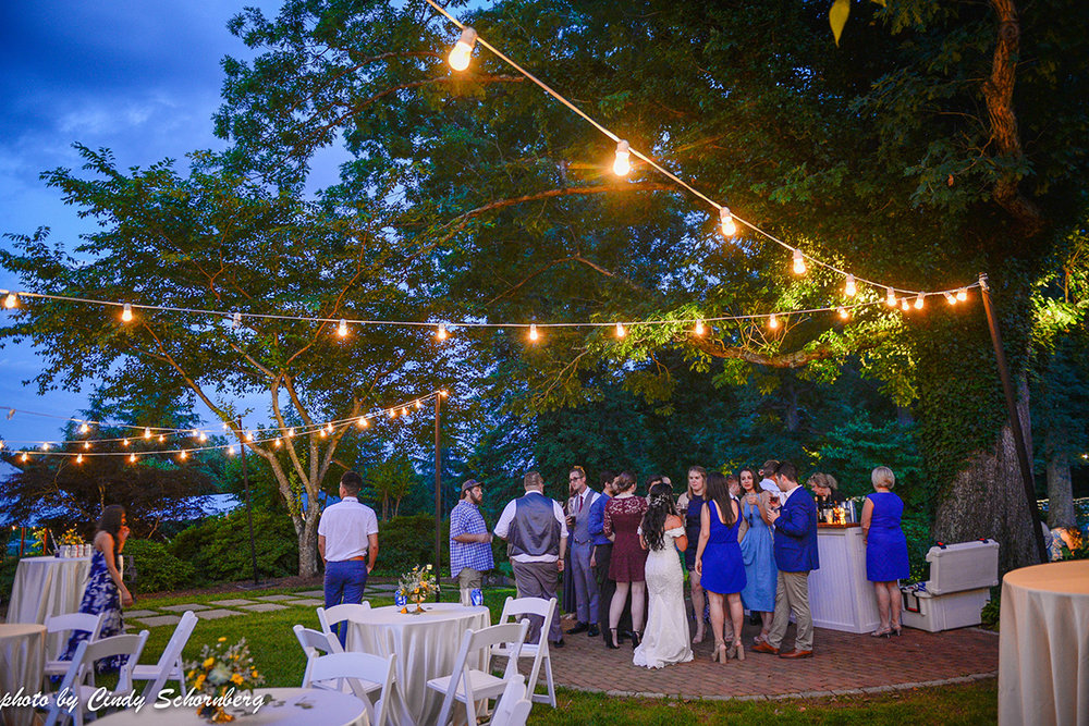 virginia_vineyard_wedding_20.jpg