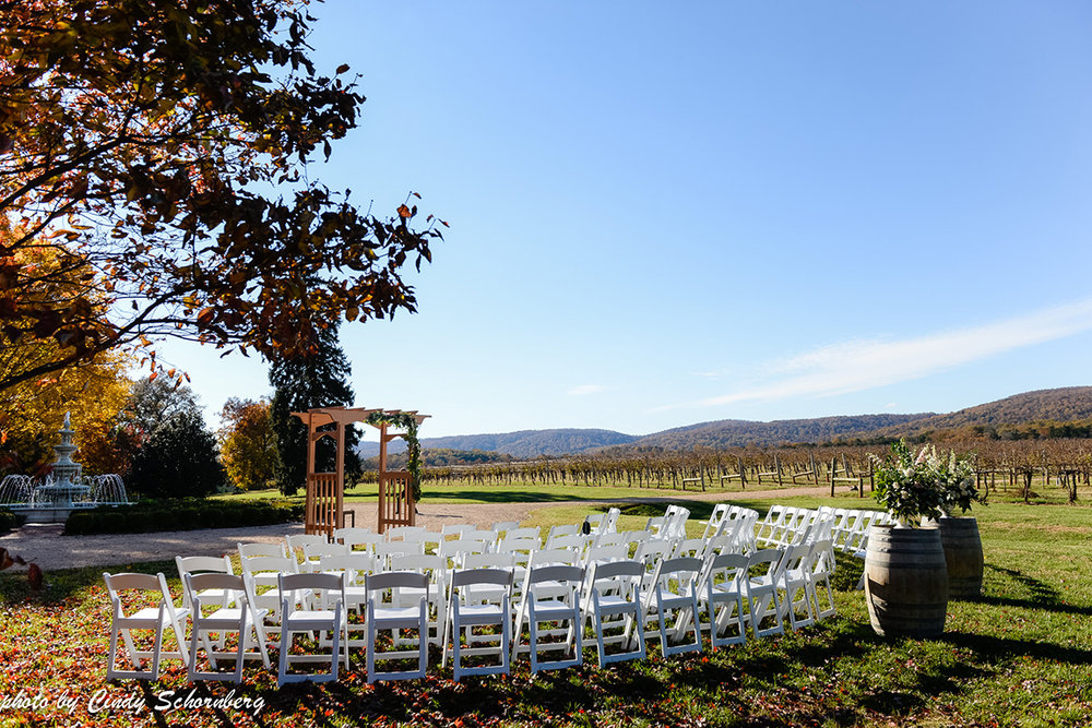 vineyard_wedding_007.jpg