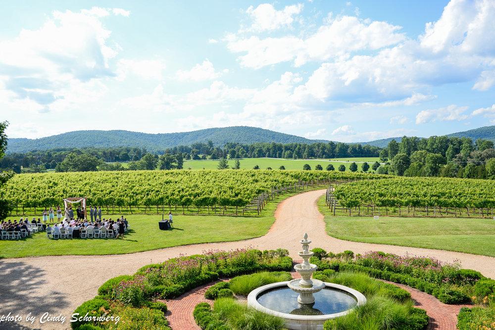 vineyard_weddings_Charlottesville_Virginia_0009.jpg