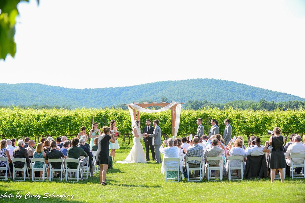 vineyard_weddings_Charlottesville_Virginia_0010.jpg