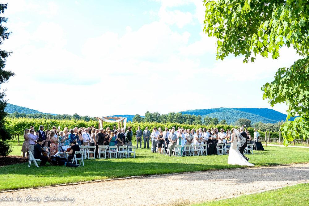 vineyard_weddings_Charlottesville_Virginia_0008.jpg