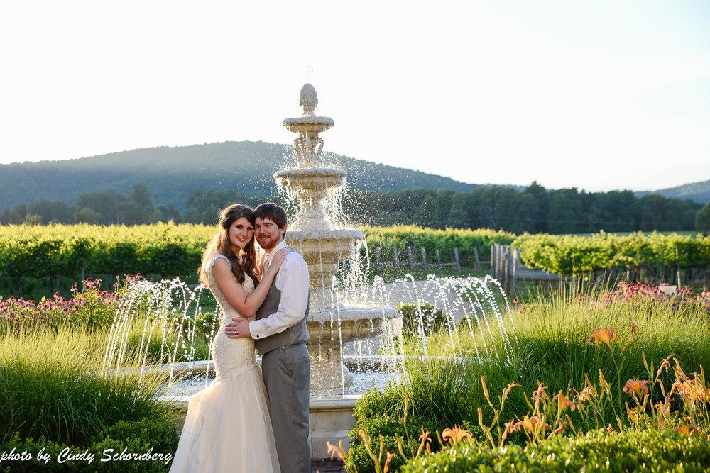 vineyard_weddings_Charlottesville_Virginia_0014.jpg