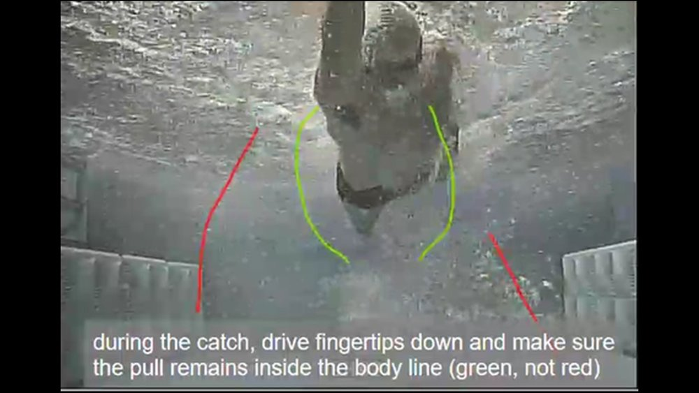 Coach Blake swimming freestyle for demonstration video