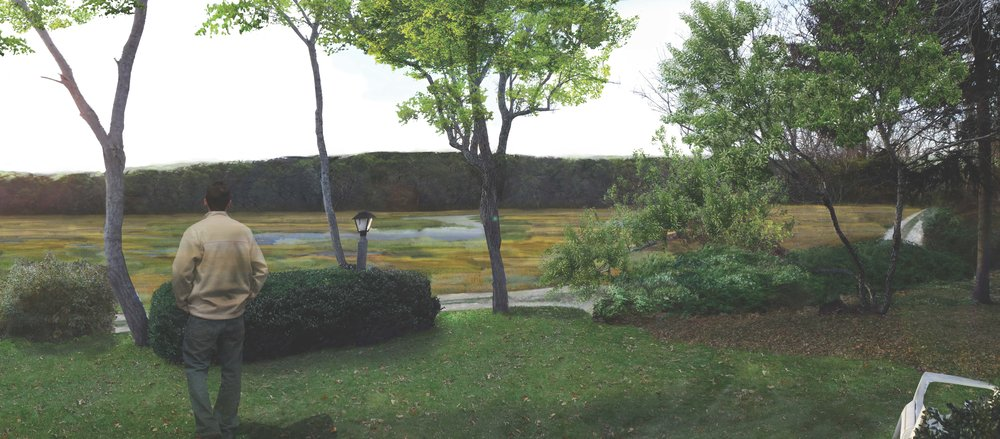 AFTER: Rendered illustration; view from property owner's home looking toward established salt marsh.