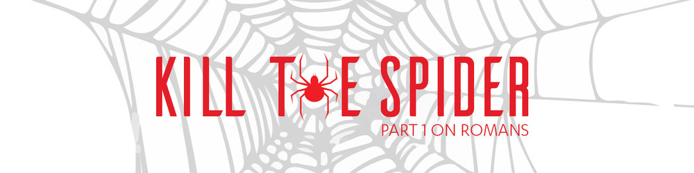 Kill The Spider Web sermon banner.jpg
