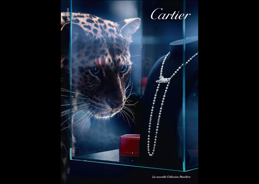 SSU_CartierPanthere_3.jpg