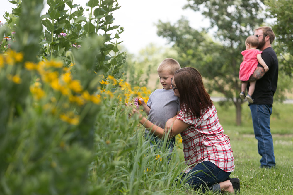 Sustainable plantings, like rain gardens, offer wonderful opportunities to engage your family with nature.