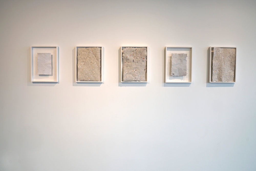 One Straw Revolution, installation view, handmade paper, wood frames, various seeds, 2017