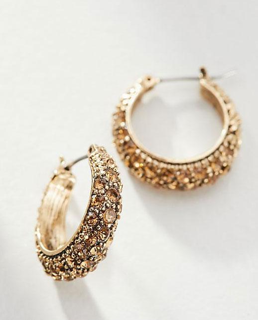 Stephanie Hoop Earrings     $48