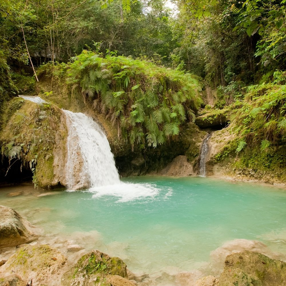 Costa Rica Hike - Banans