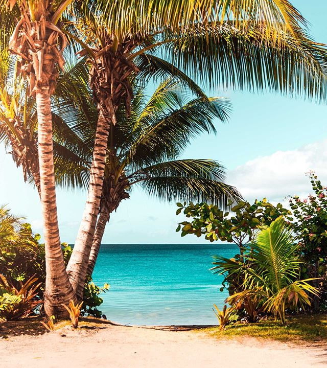 We live for backdrops like this...😍☀️🌴 Only days away till this is your reality! #gradtrip2019 • • • #Ceremony #FindParadise #travel #travelmore #traveloften #gradtrip2019 #adventureseeker #doyoutravel #goexplore #seekmoments #adventure #foreversummer #Gradtrip
