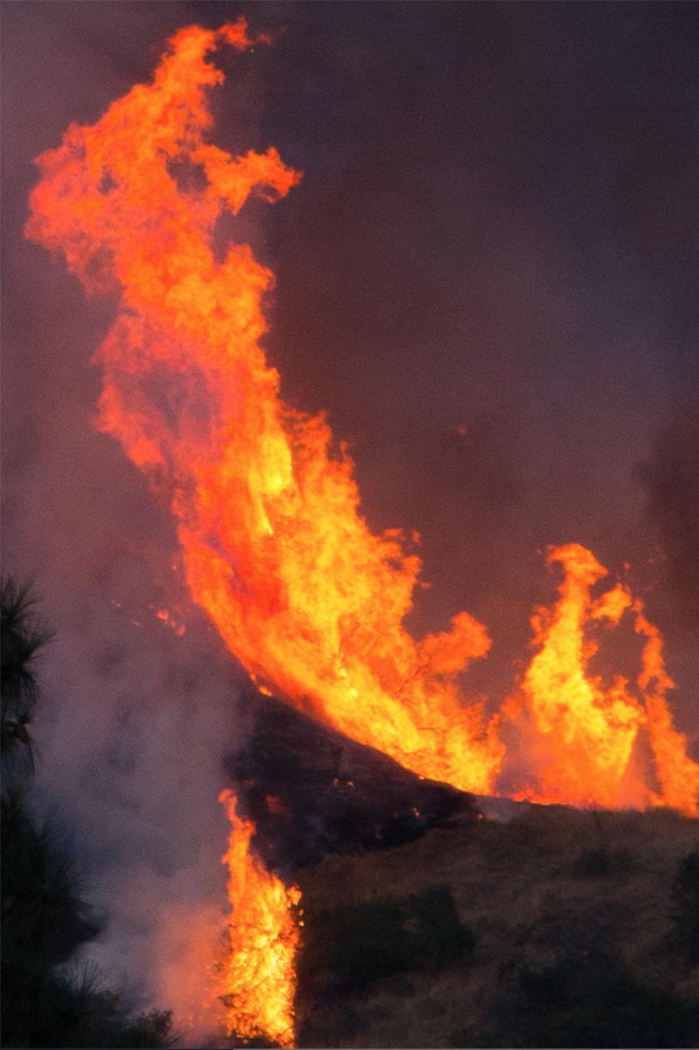 Noah Dillion   Fire  -21x46  (comes framed)