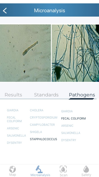 Microanalysis_Pathogens Copy.jpg