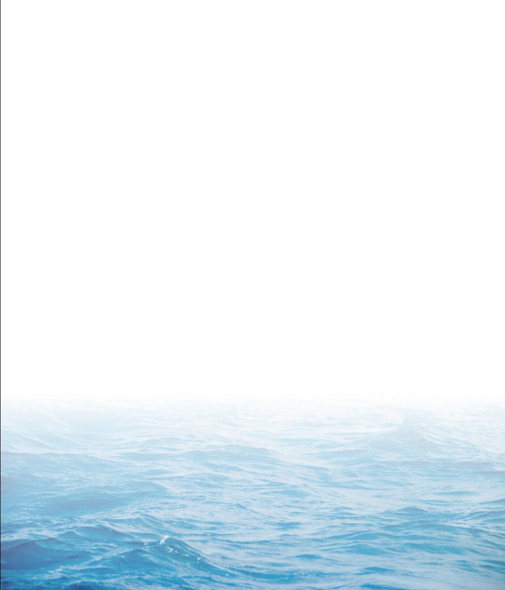 ocean face.png