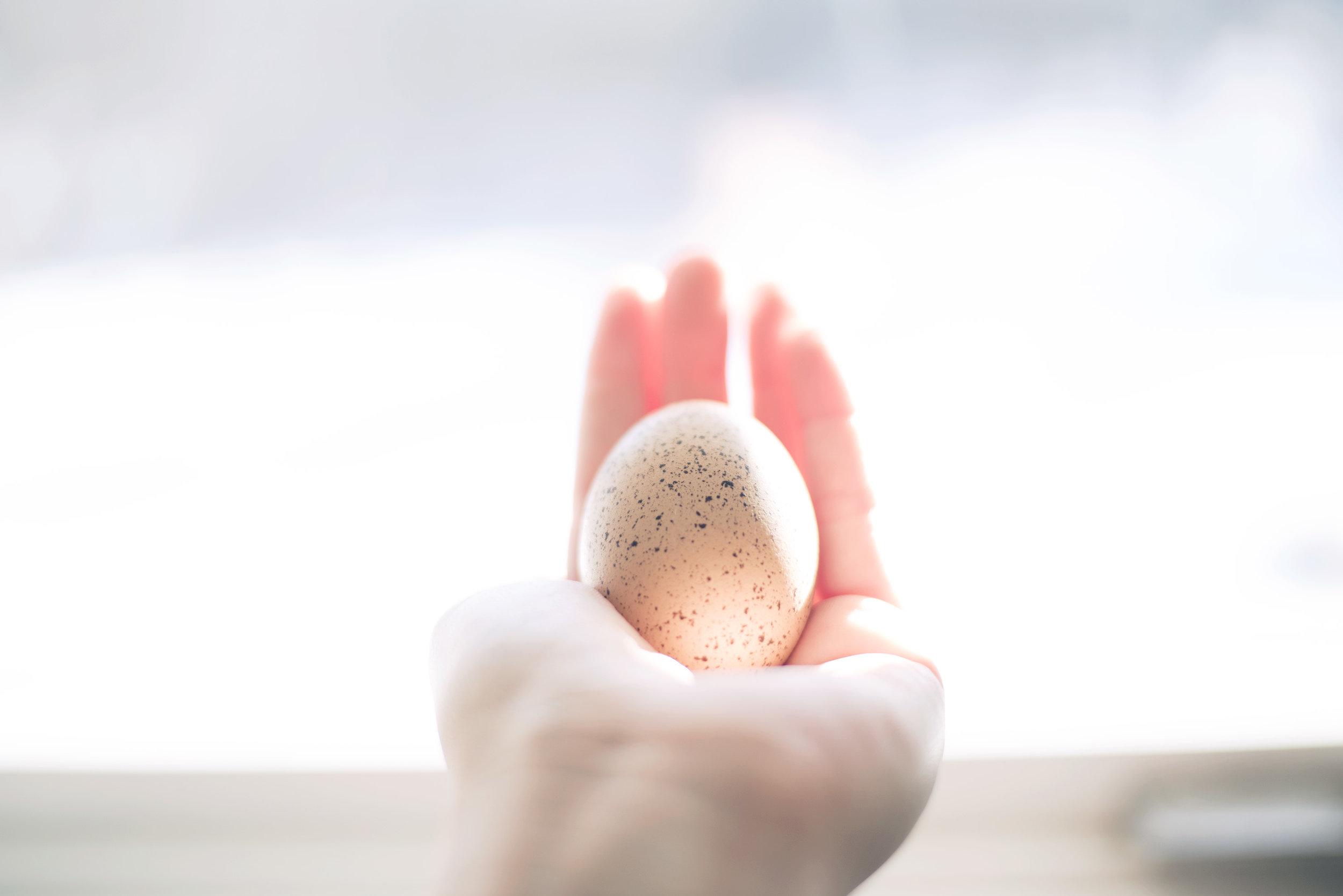 egghand