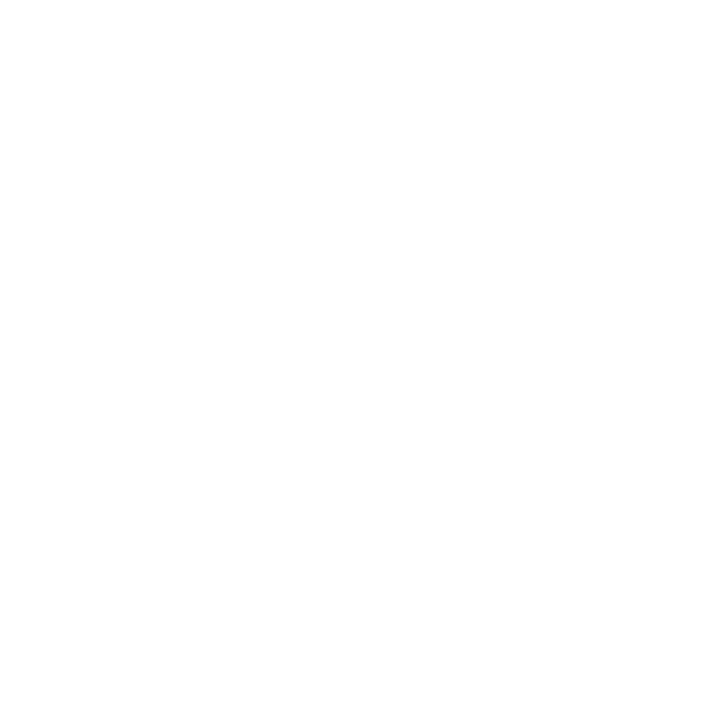 VISIT TOCCOA ICONS 3-01.png