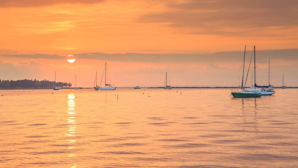 SunriseHarborfinal.jpg