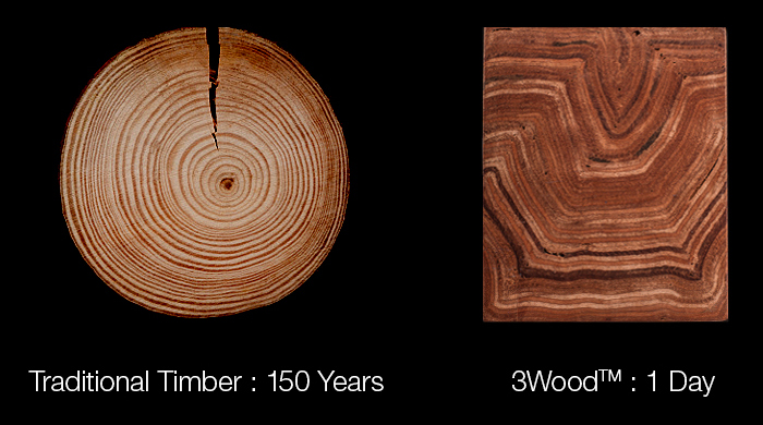 Traditional-Timber-v-3Wood_2.jpg
