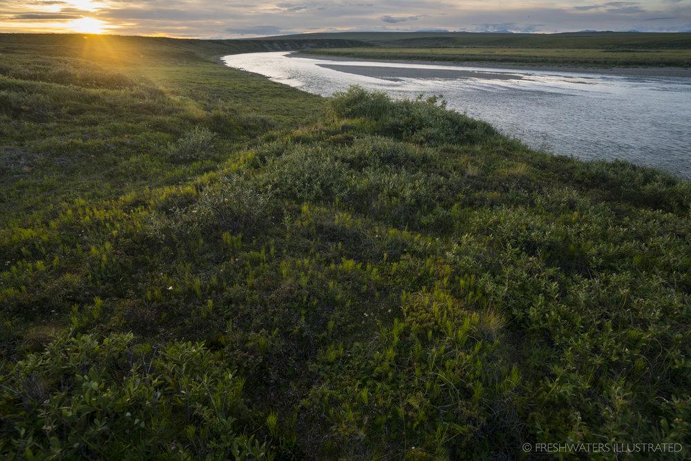 Noatak River, Alaska  www.FreshwatersIllustrated.org