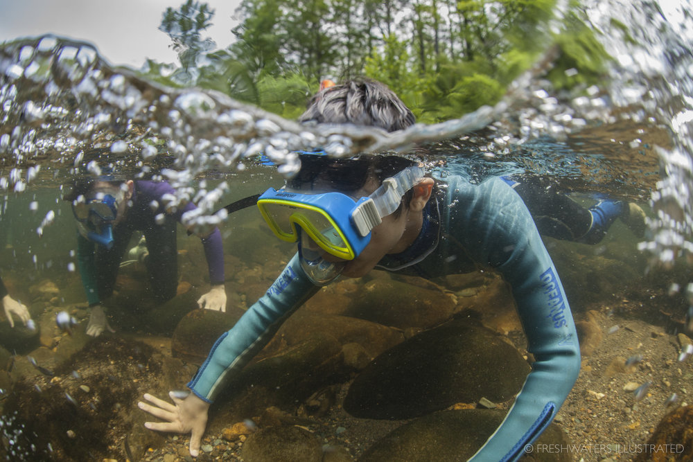 A Deeper Creek -