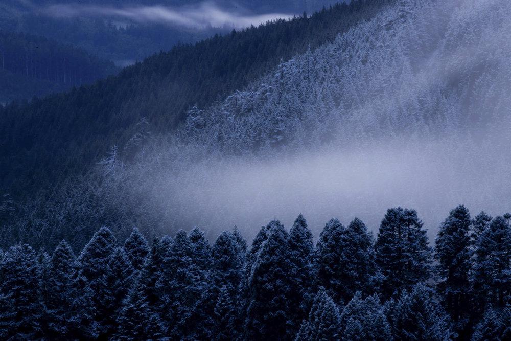 Mary's Peak, Oregon