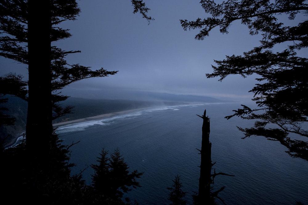 Coast through the trees, Oregon