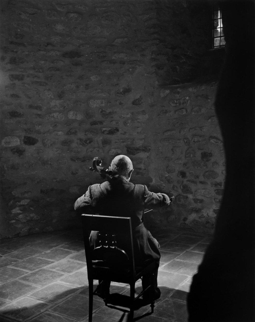 «Pablo Casals» av Yousuf Karsh