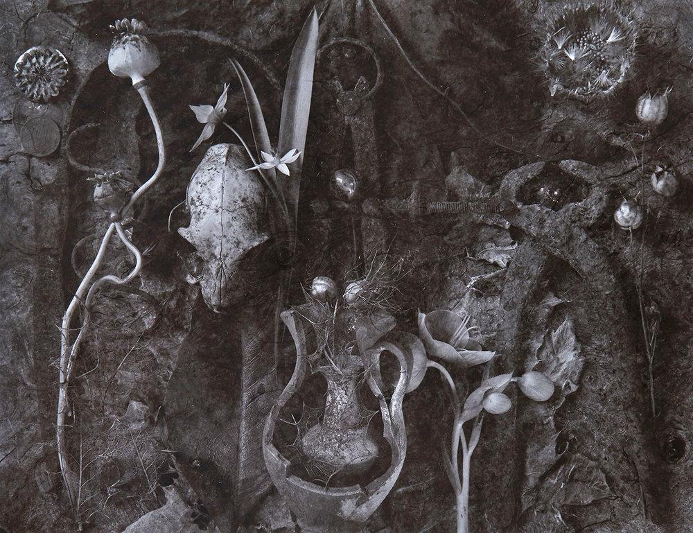 «The Garden, Fragments of a history, No.1» av John Blakemore: