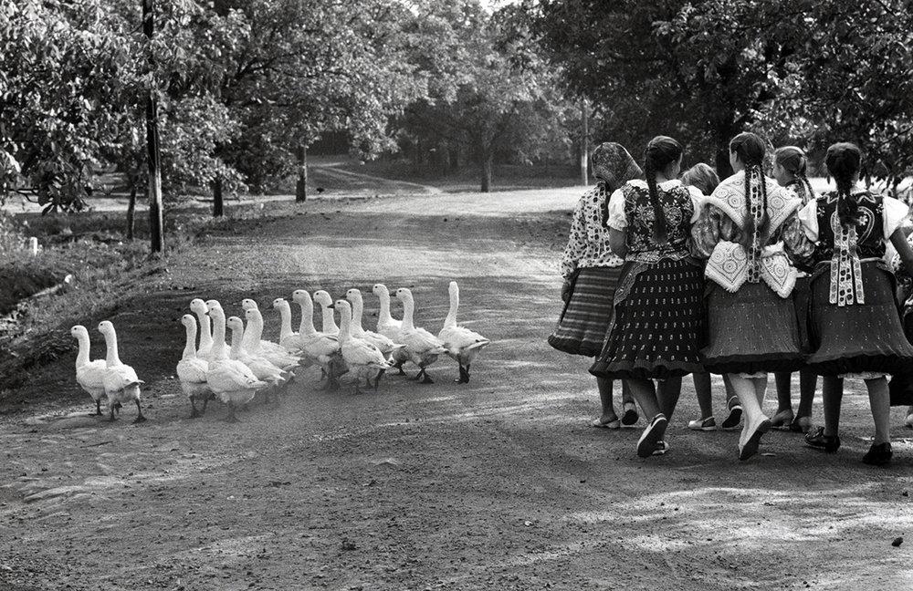 «Hungary», 1964 av Elliot Erwitt