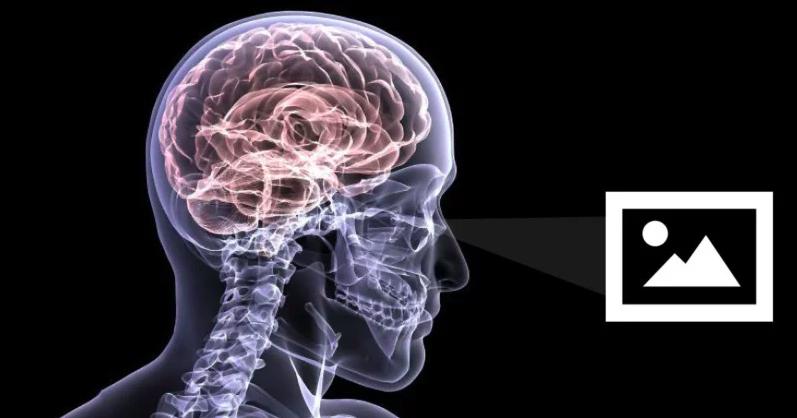 neuroestética1.png
