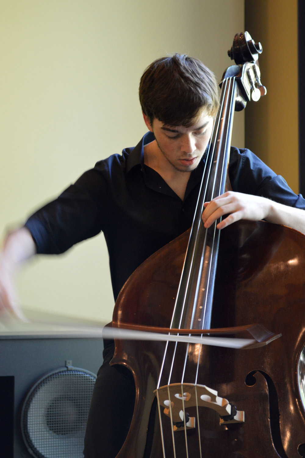 78432297-2018_Double_Bass_Institute_185.JPG