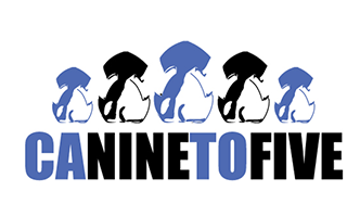 Canine To Five #  Location:  # 2351 Morena Blvd#  San Diego, CA 92110 # (619) 684-5959