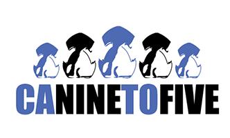 Canine To Five <Br> Location: <Br> 2351 Morena Blvd <Br> San Diego, CA 92110 <BR> (619) 684-5959<Br>